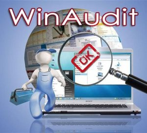 WinAudit 3.0.11 Final Rus Portable