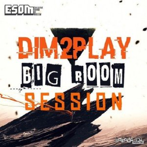 DIM2PLAY - Bigroom Session Level 4 (2015)