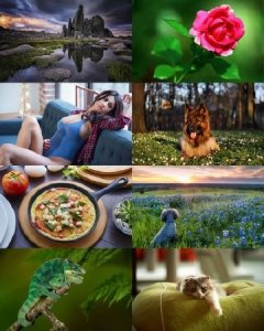 Wallpapers Mix №398